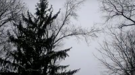 Seasonal Affective Disorder: Knowing the Effects