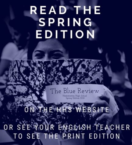 Blue Review literary magazine releases spring edition