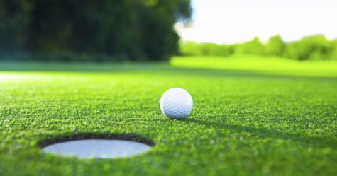 Golfers hit the mark, advance individually
