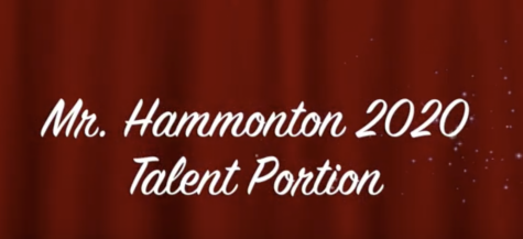 Mr Hammonton 2020: All Talent Acts